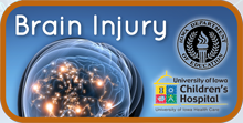 Brain Injury logo