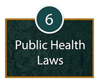 Domain 6: Public Health Laws